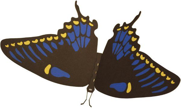assembled butterfly puzzle