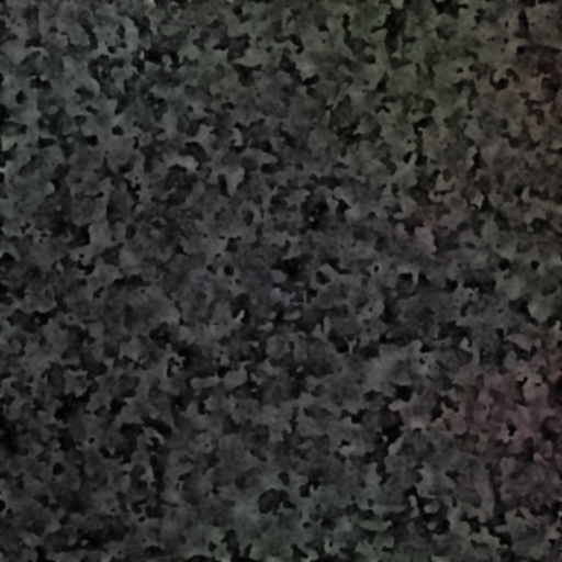 I know you can't see it, but this is a really nice render of something that looks like granite.